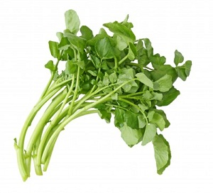 Watercress Recipe